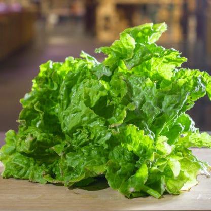 Salat je nach Saison