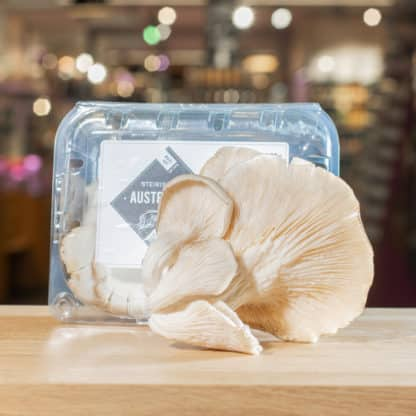 Austernpilze 150g